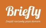 logo briefly